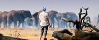 Botswana Wild Parks