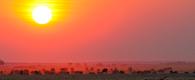 Namibia Botswana Desert & Delta