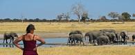 Zimbabwe & Botswana Game Trail